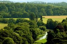 New £1m funding for woodland creation and management near HS2