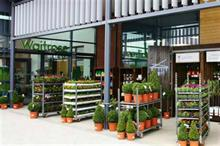 Latest supermarket personnel changes see Waitrose appoint new plant buyer