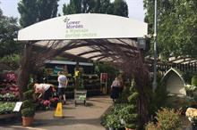 Glendale Horticulture to supply Wyevale Garden Centres with herbs as UK sourcing steps up