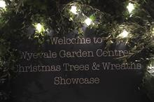 Wyevale Garden Centres increases Christmas offer eight-fold
