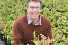 Fern sales lead record May for Wyevale Nurseries