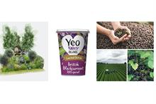 Yeo Valley Organic launches limited-edition British blackcurrant yogurt in partnership with RHS and grower Anthony Snell