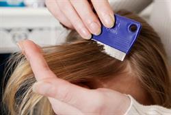 New head lice treatments