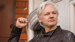 Cat got your internet? Ecuador tells Assange to look after kitty, stop meddling in foreign affairs