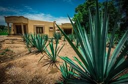Threat of info-stealing malware Dark Tequila hangs over Mexicans since 2013