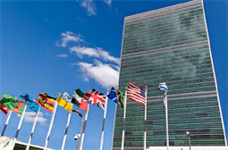 UN, NGOs targeted by ongoing phishing attack
