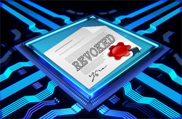 Bug in digital certificates could stop websites working