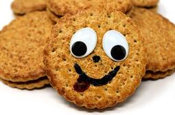 Compulsory cookies violate GDPR says Dutch data protection authority