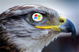 StealthFalcon backdoor using Windows BITS to hide action