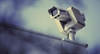 The Investigatory Powers Act's wide-reaching implications