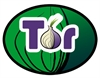 Microsoft expert: Tor security compromised by NSA