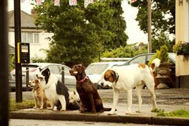 Churchill ad: pet insurance