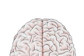 THE TALENT REPORT: Left brain or right brain: what kind of marketer are you?