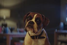 John Lewis Christmas spot 'Buster the Boxer' is most-shared ad of 2016