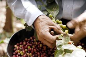 Fairtrade Fortnight: raising the issue of food poverty