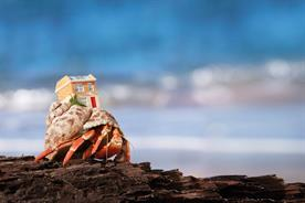 When crabs write the script: How Zoopla made its new ad campaign