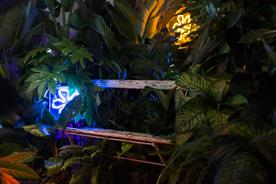 Nokia uses live stream lounge, plants and neon lighting to debut new phone features