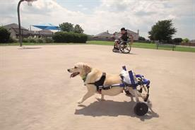 """Kleenex: """"unlikely best friends"""" by VSA Partners USA"""