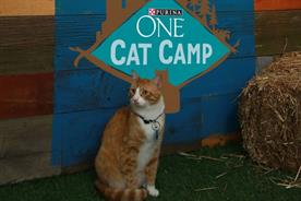 Purina One finds cats plus Periscope equals a global audience