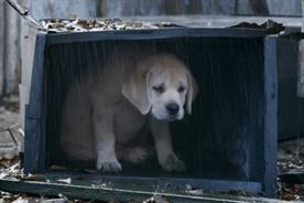 Budweiser: 'Lost Puppy' spot tops the Campaign Viral Chart.