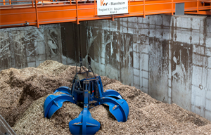 Germany hopes for better response with second biomass auction