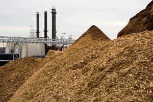 Bioenergy sector criticises 'oversimplified' EU 2030 Climate Target Plan
