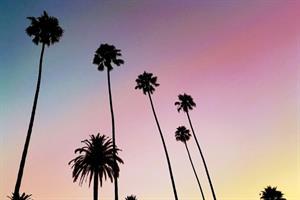 Visit California puts social media under review