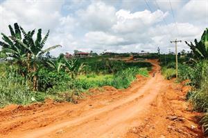 Mercury provides media, lobbying support to Cameroon