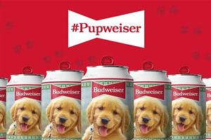 Budweiser taps into the power of puppies