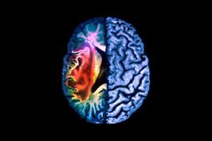 Aspirin 'fails to cut vascular events'
