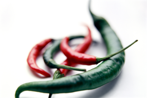 Chilli pain patch is approved for Wales