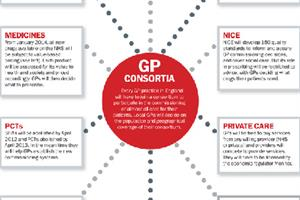 GP consortia: where the real power lies...