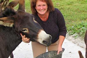 Dr Louise Eccles Interview: The GP donkey rescuer