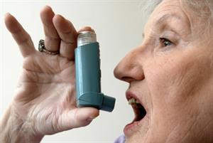 Appoint named asthma lead to save lives, practices told