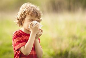 Hayfever: clinical review