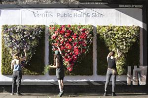 """Venus """"Floral vaginas"""" (in-house)"""