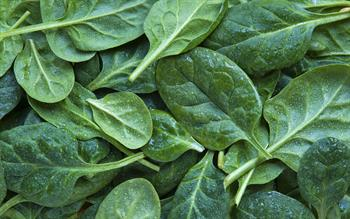 No need to restrict dietary vitamin K intake in patients on warfarin, say researchers