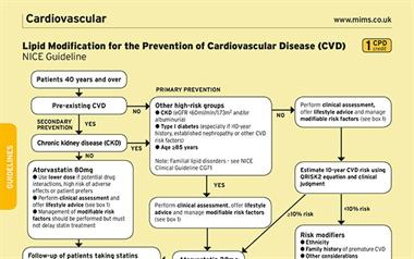 Lipid Modification for the Prevention of Cardiovascular Disease (NICE Guideline)
