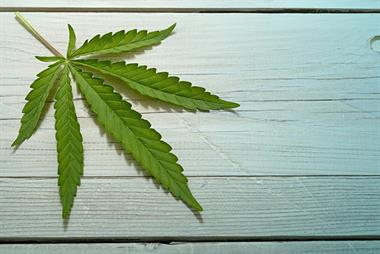 GPs could prescribe cannabis under shared care plans, NICE says