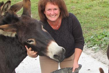 Your GP magazine preview - 24 November: Exclusive Wollaston & GP donkey rescuer