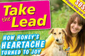 Dogs Trust creative switches to women's weekly format