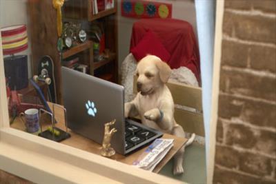 Andrex unveils new CGI puppy