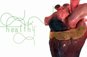 Animated heart features in BHF ad campaign