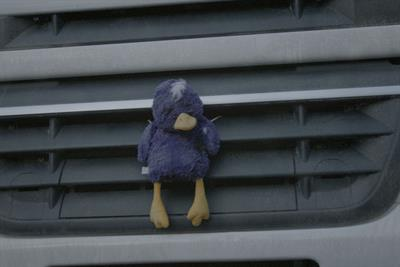 Fallon introduces stuffed duck to launch Cadbury Puddles
