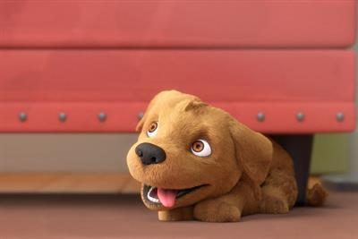 Guide Dogs tells the story of Flash the puppy in heart-tugging animated film