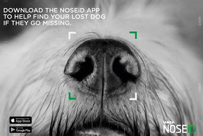 Pick of the Week: Iams' app for lost dogs is a treat