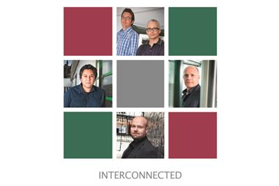 Interconnected issue 2013