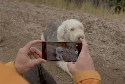 OnePlus partners Google to create photographic gallery