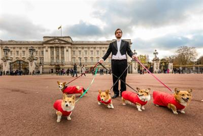 Three UK debuts dog-sitting business to celebrate return of Netflix series The Crown