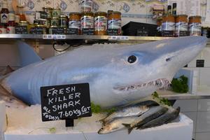 Event TV: Syfy creates shark prank to promote Sharknado 2 film